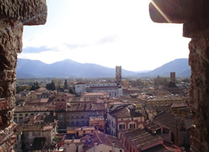 A view of Lucca from inside one of its medieval towers